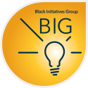 Employee and Inclusion Group -  BIG